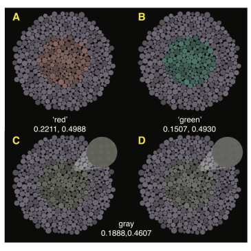Is adding a new class of cones to the retina sufficient to cure color-blindness?