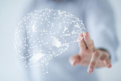 KNAW Grant for new collaboration with Spinoza Center for Neuroimaging